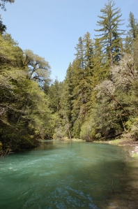 South Fork Eel River with flowing blue water.