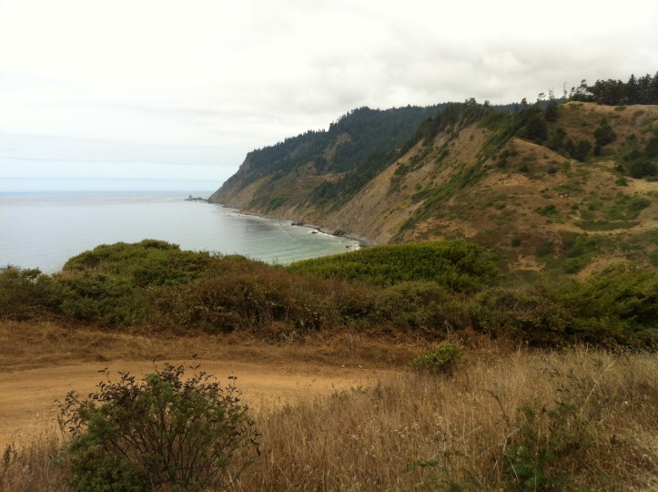 A view of the Lost Coast from Shady Dell