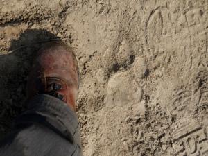 A tiger track dwarfs my hiking boot in Nepal.