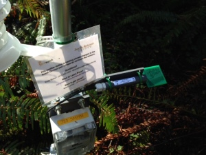 A weather station at Jedediah Smith Redwoods State Park remains wet on the forest floor despite our super dry winter.