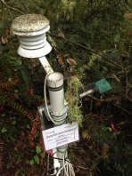 Aphid, sooty mold, and lichen covered weather station at Samuel P. Taylor State Park.