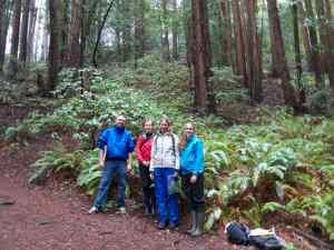 Fern Watch is powered by amazing volunteers like Eric Havel, Mary-Ellen Hannibal, Deborah Zierten, and Cat Morris (left to right).