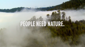 Nature Is Speaking – Robert Redford is theRedwood