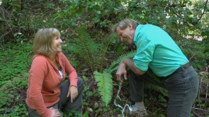 Doug McConnell and I find fern research amusing at Big Basin Redwoods State Park.