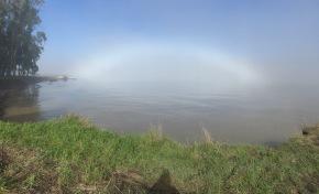 Elusive White Rainbow FinallySeen